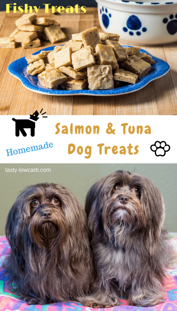 Dogs Eat Sardines